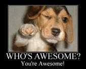 who's awesome, you're awesome